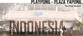 Playpong